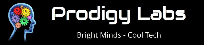 Logo Bright Minds V2@2x.png